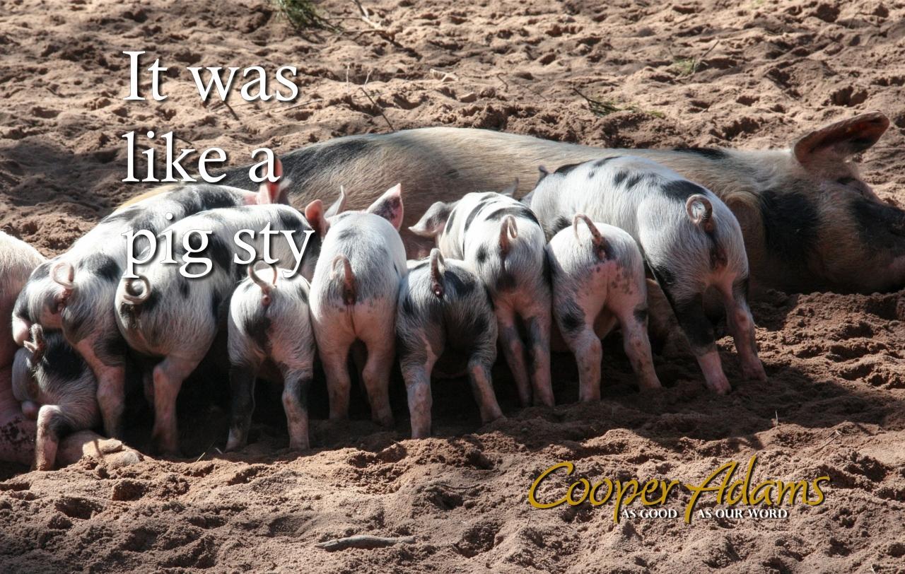 It was like a pig sty