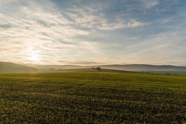 Sunset over Somerset field