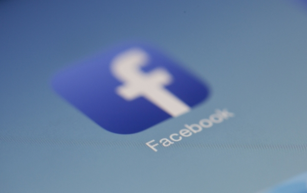 The Potential of Facebook Advertising for Estate...