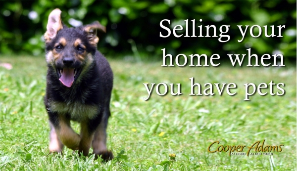 Selling your home when you have pets