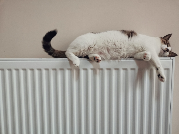 8 Ways Homeowners in Sidcup Can Reduce Their Heating Costs