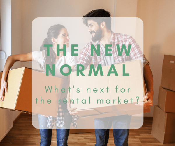 'The New Normal': What's next for the rental market?