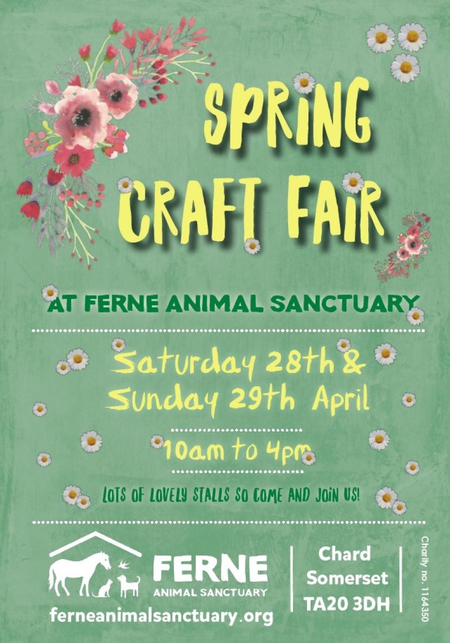 Spring Fair at Ferne Animal Sanctuary