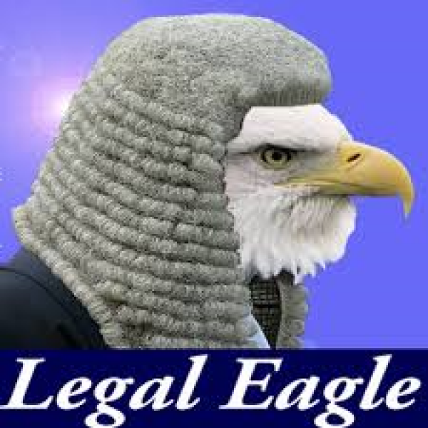 Choose a legal Eagle not a Turkey