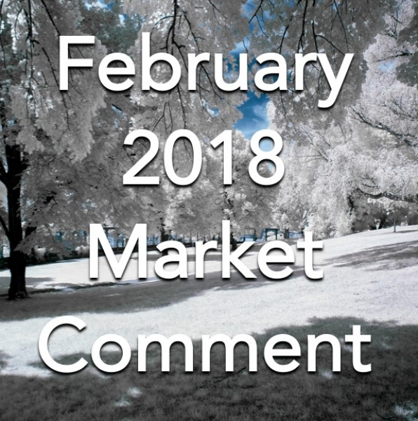 February 2018 Market Comment for South Somerset