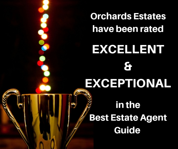 Best Estate Agent Guide winners