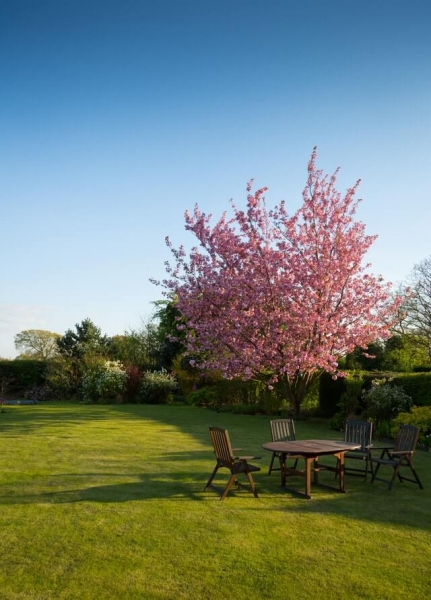Easy garden makeover tips to add value to your St Neots home