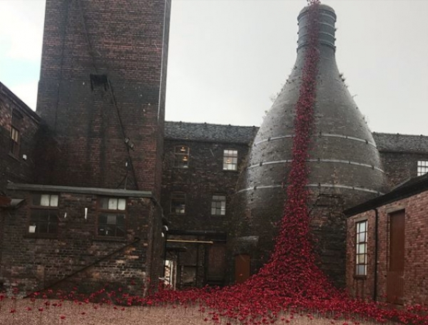 If You Haven't Seen the Poppies at Middleport Pottery, You Must