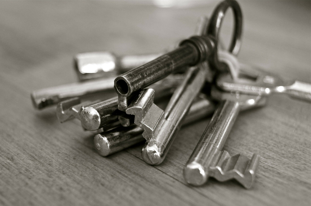 >Photo of a bunch of silver keys