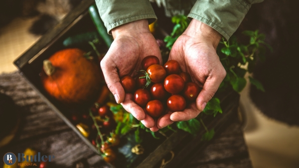 Organic September: What is it and how can you get involved?