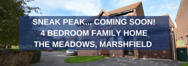 Sneak Peak - The Meadows, Marshfield