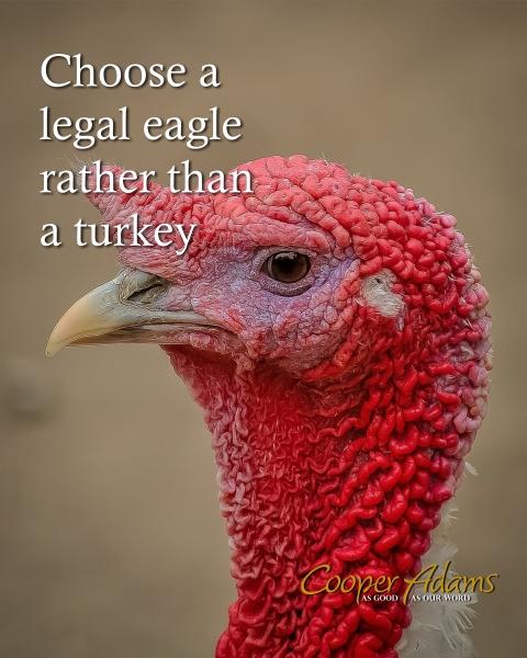 Choose a legal Eagle not a Turkey