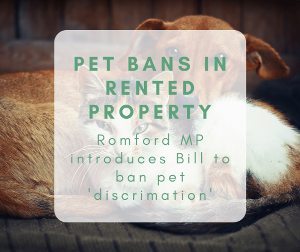 Pet Bans in Rented Property: Romford MP's Bill to ban pet 'discrimination'
