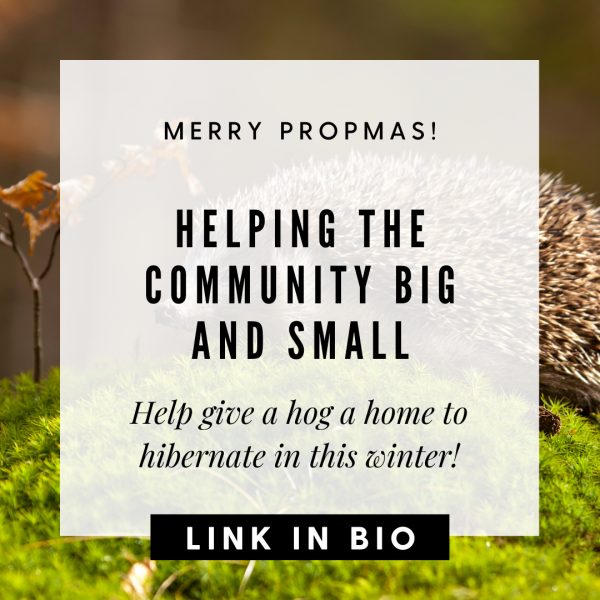 Helping Wickford Residents Big and Small: Help give a hog a home!