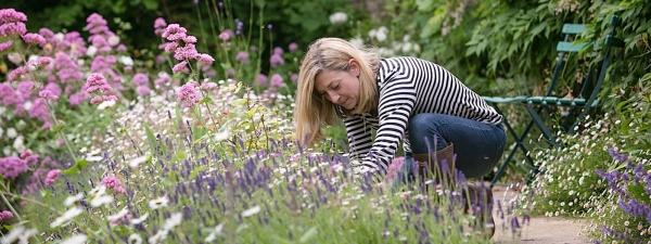 Ask the Expert: Garden Designer Nina from Nina's Gardens