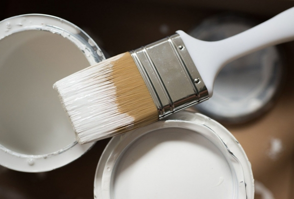 2021 Paint Trends: Why Magnolia is Out, and Dead Salmon is in!