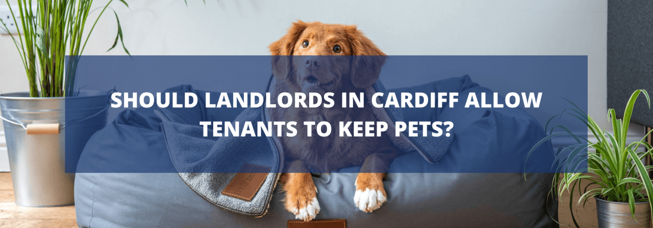 >Should Landlords in Cardiff Allow Tenants to Keep