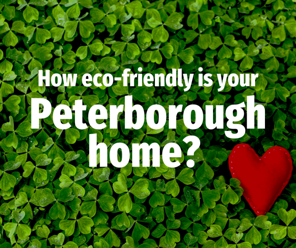 How Eco-friendly are Peterborough Homes?