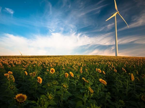 Top tips for saving Energy