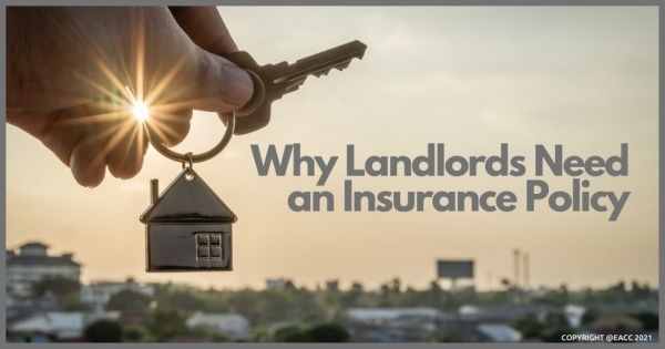 Why Neath Landlords Need an Insurance Policy