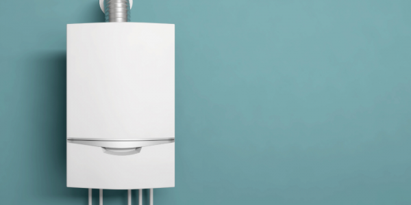 As gas boilers are banned from 2025, would a heat pump save YOU money?