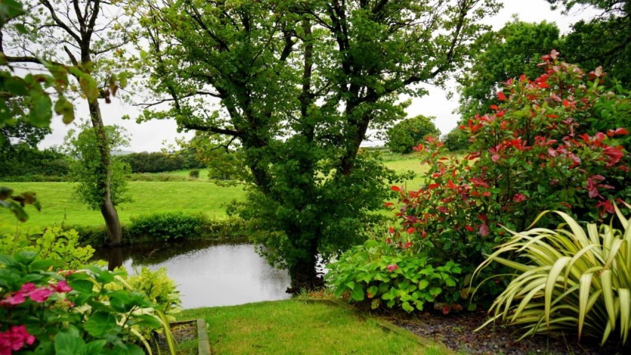 >Garden