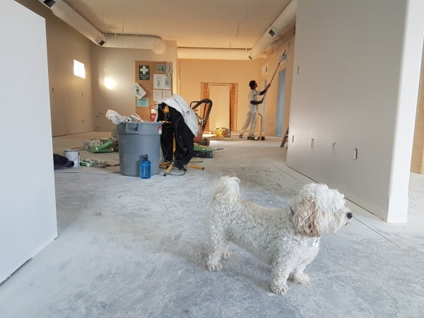 The Top Five Renovation Mistakes Neath Homeowners Should Avoid