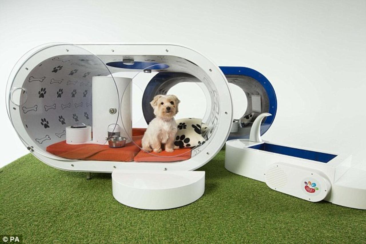 >Expensive Dog kennel Samasung