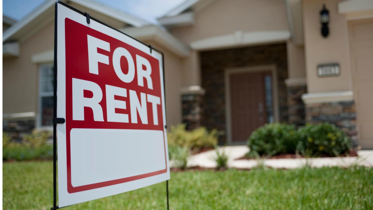 >The Renting Rush
