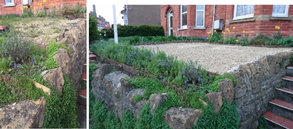 garden before and after updating