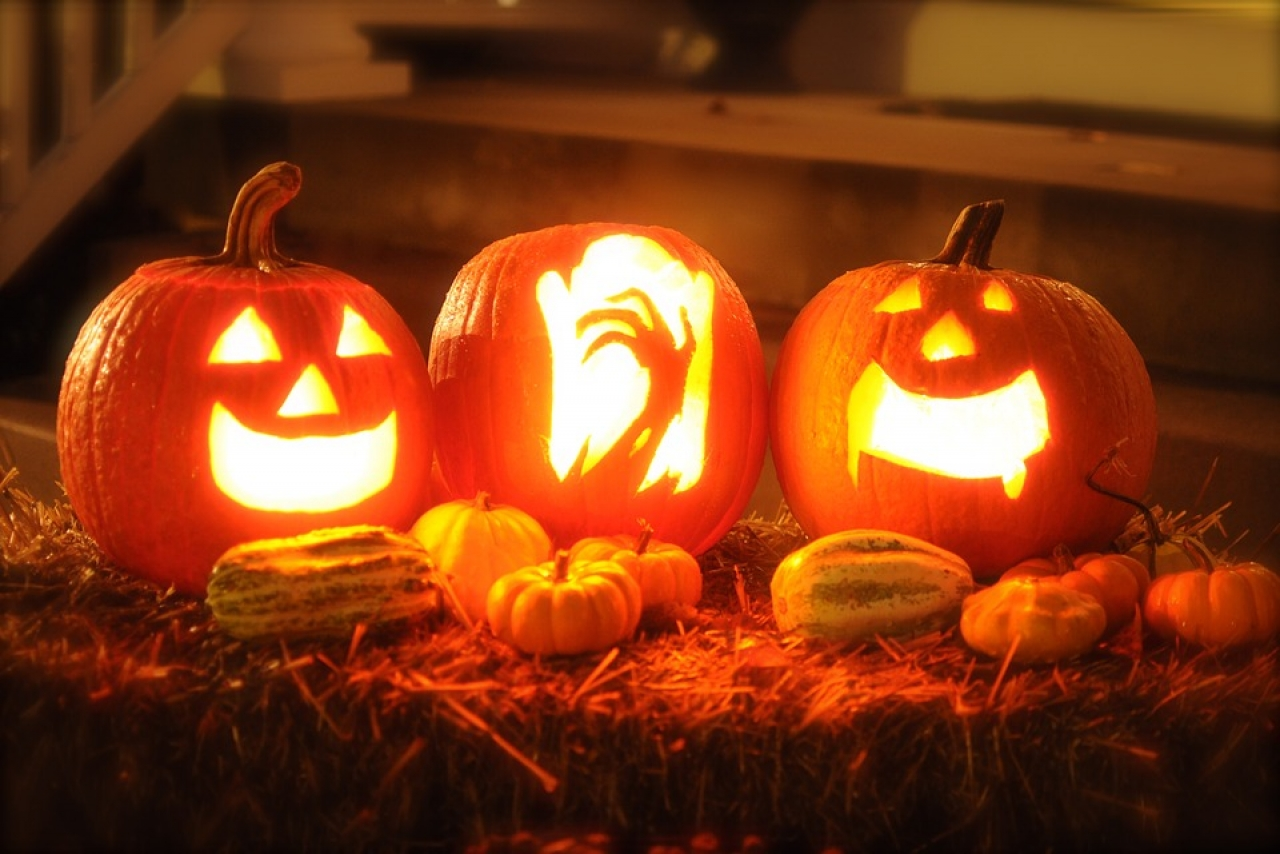 >Family Halloween activities in Stoke on Trent